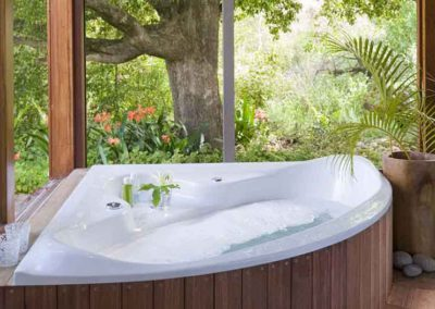 Mint-Wellness-Camps-Bay-Retreat-Spa-nature-bath