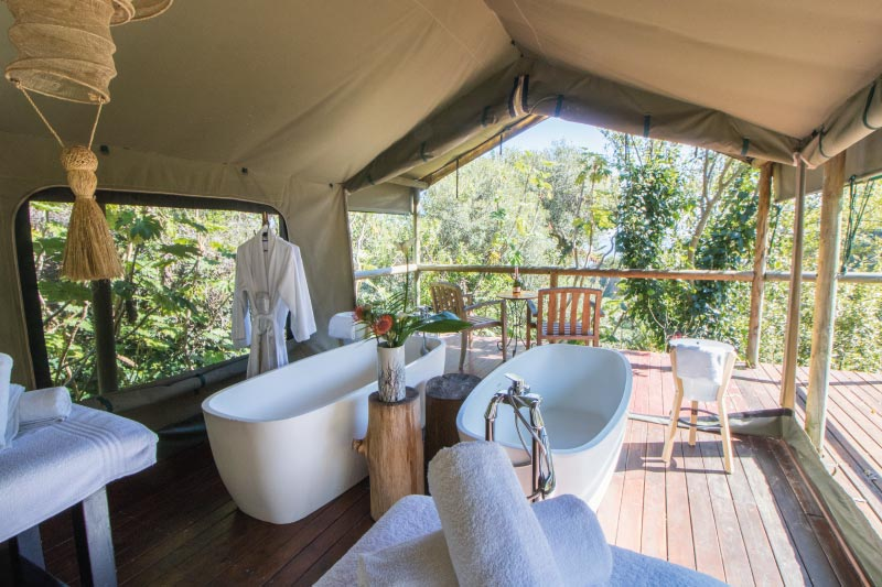 camps-bay-retreat-mint-wellness-nature-tent